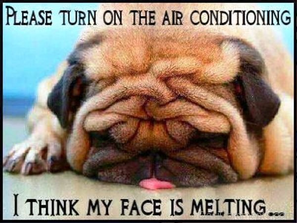Please Turn On The Air Conditioning