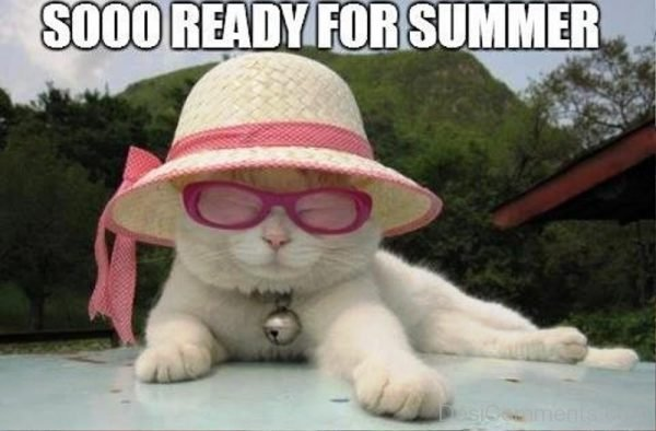 So Ready For Summer