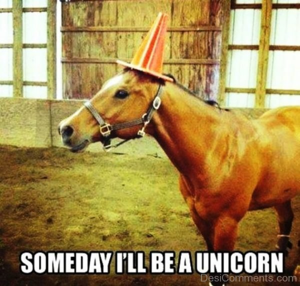 Someday I ll Be A Unicorn