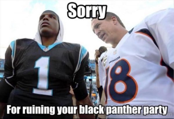 Sorry For Ruining Your Black Panther Party