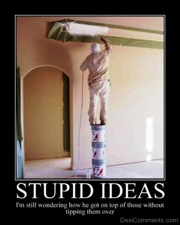 Stupid Ideas
