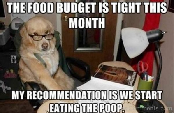 The Food Budget Is Tight