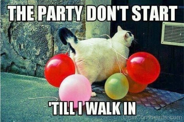 The Party Dont Start