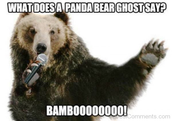 What Does A Pana Bear Ghost Say