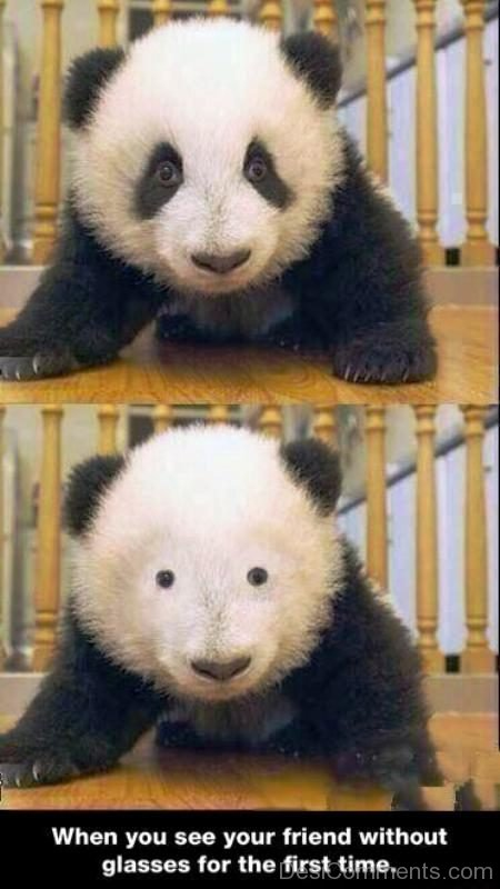 When You See Your Friend Without Glasses