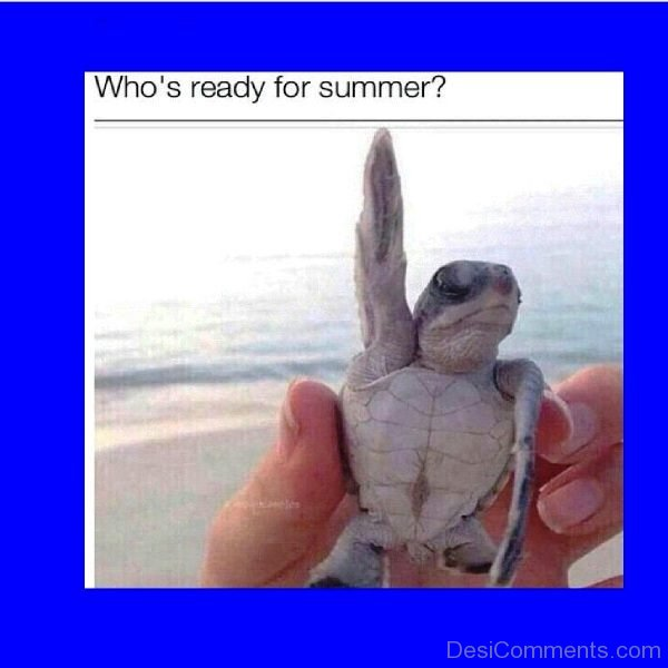 Whos Ready For Summer