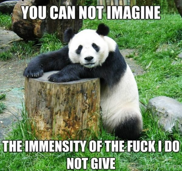 You Cannot Imagine