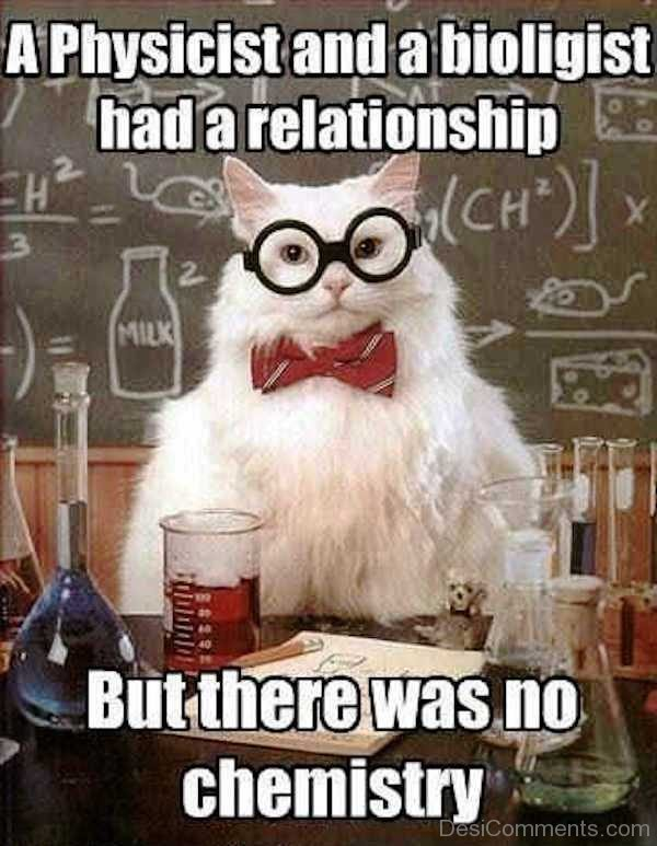 A Physicist And A Bioligist Had A Relationship