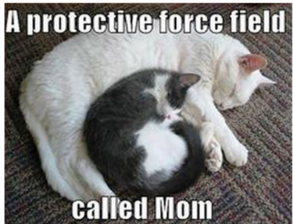 A Protective Force Field Called Mom