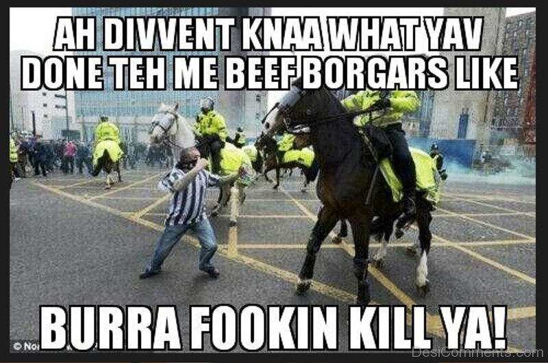 43 Top Funny Horse Memes - Funny Pictures - DesiComments.com