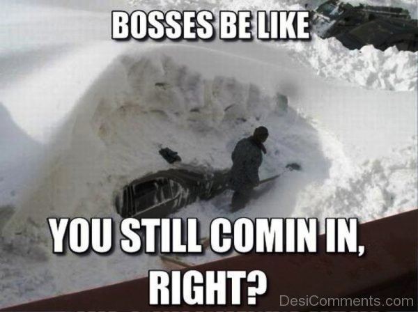 Bosses Be Like