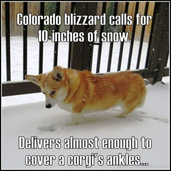 Colorado Blizzard Calls For 10 Inches