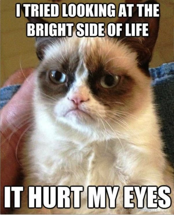 I Tired Looking At The Bright Side Of Life