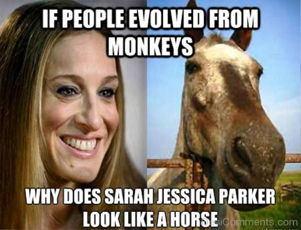 If People Evolved From Monkeys