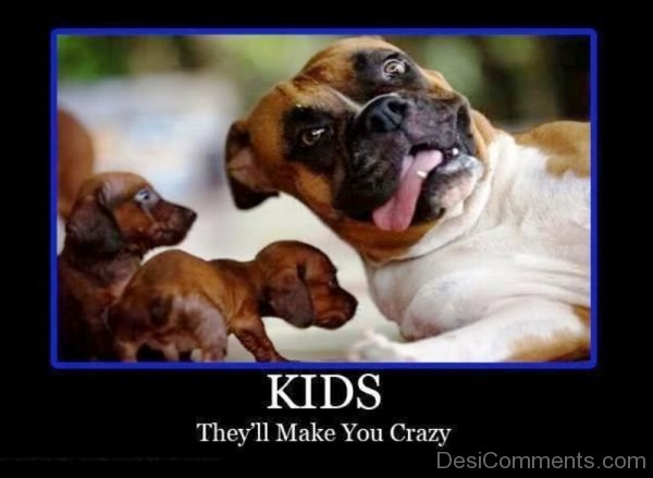 Kids They ll Make You Crazy