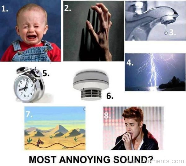 Most Annoying Sound
