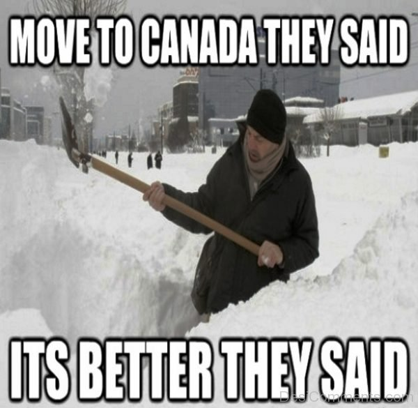 Move To Canada They Said