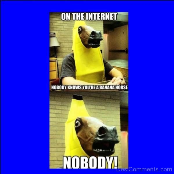 Nobody Knows You re A Banana Horse