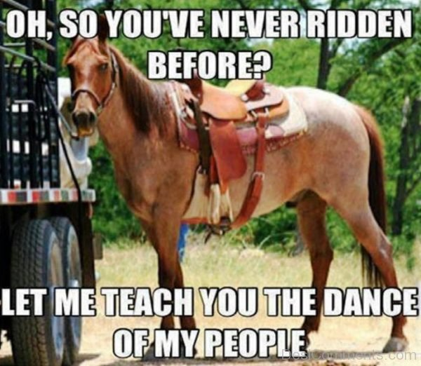 Oh So You ve Never Ridden Before