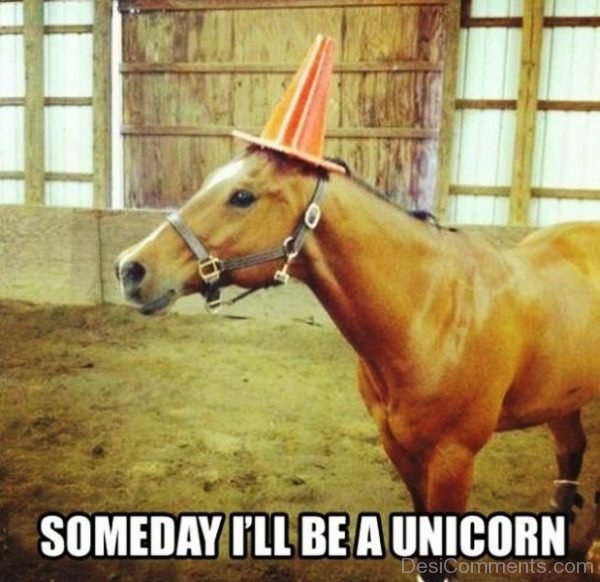 Someday Ill Be A Unicorn
