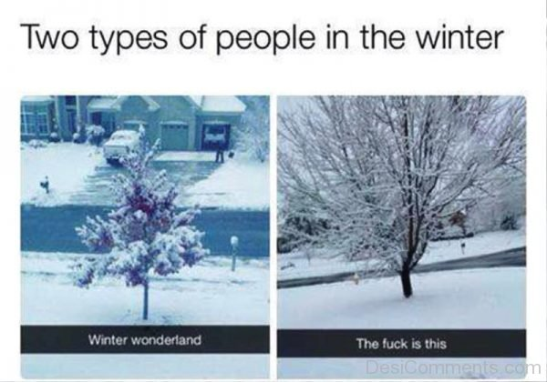 Two Types Of People In The Winter