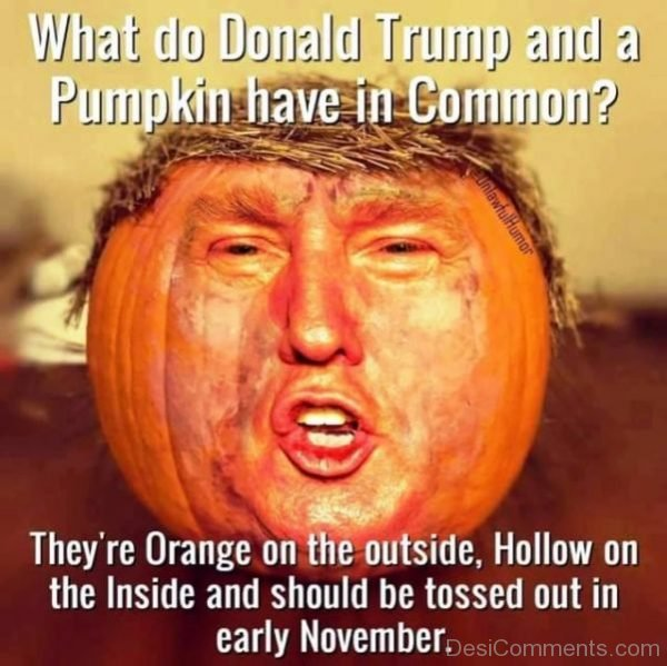 What Do Donald Trump And A Pumpkin