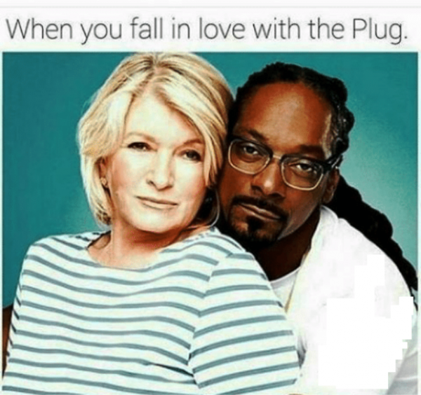 When You Fall In Love With The Plug