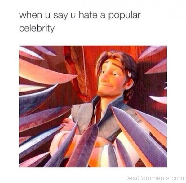 When You Say You Hate A Popular Celebrity