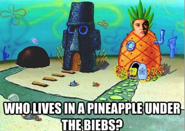 Who Lives In A Pineapple Under The Biebs