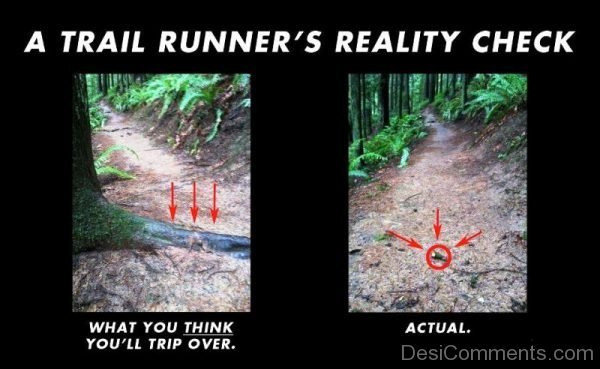 A Trail Runners Reality Check