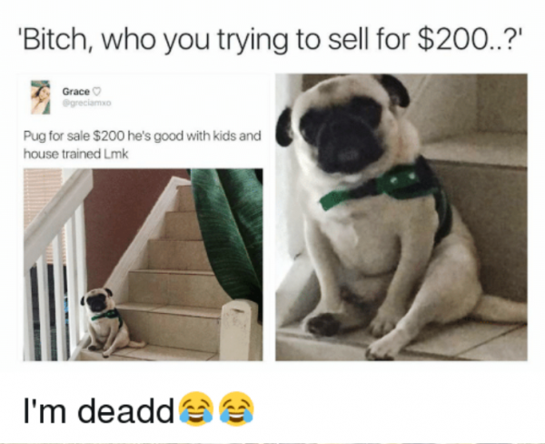 Bitch Who You Trying To Sell