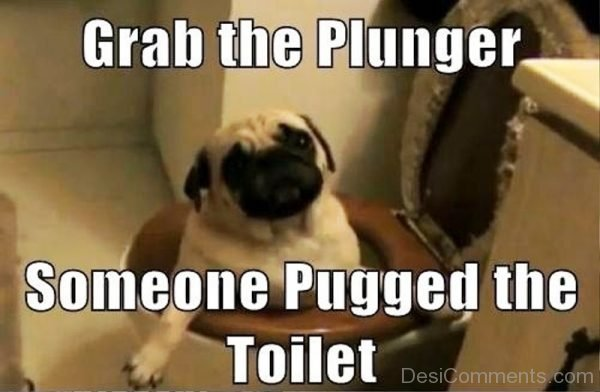 Grab The Plunger
