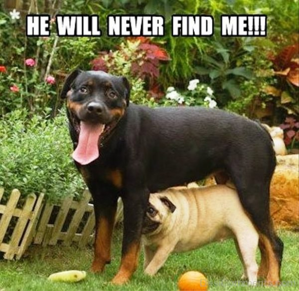 He Will Nevr Find Me
