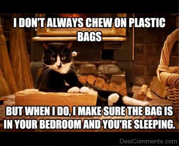 I Dont Always Chew On Plastic Bags