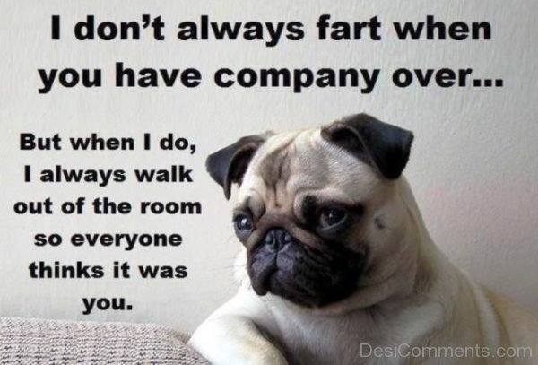 I Dont Always Fart