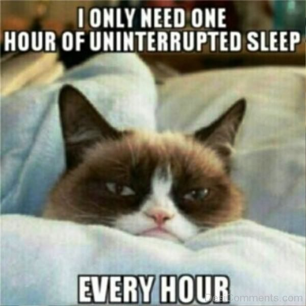 I Only Need One Hour Of Uninterrupted Sleep