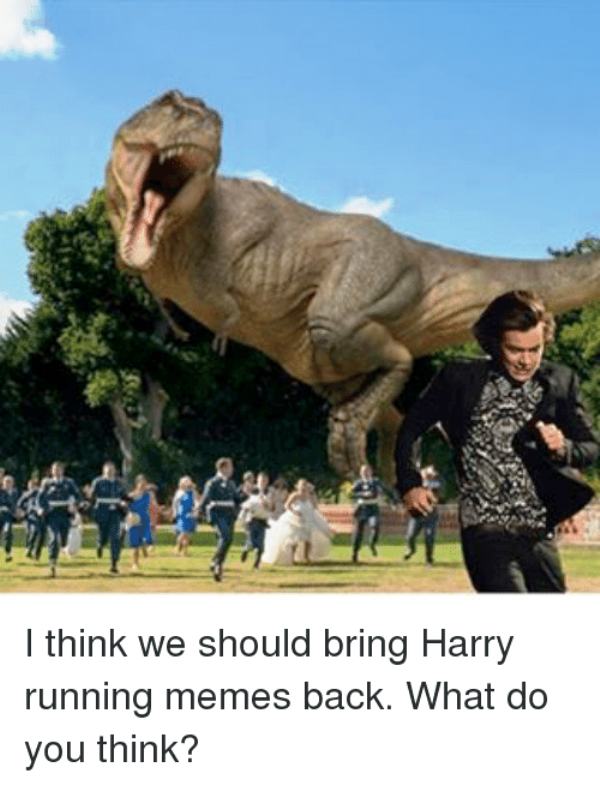 I Think We Should Bring Harry