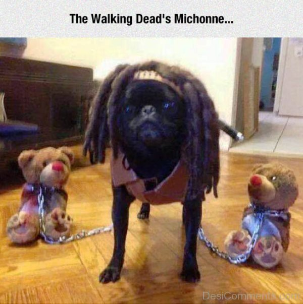 The Walking Deads Michonne