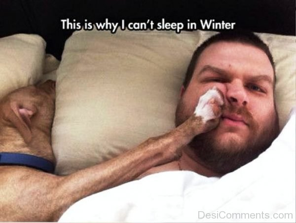 This Is Why I Cant Sleep In Winter