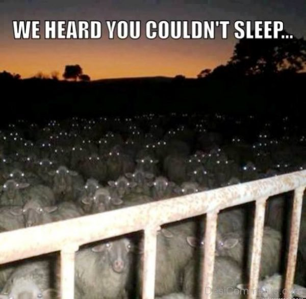 We Heard You Couldnt Sleep