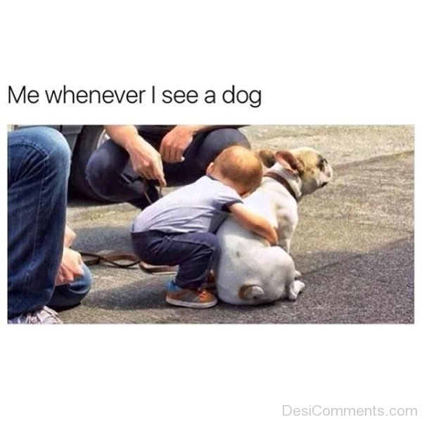 Me Whenever I See A Dog
