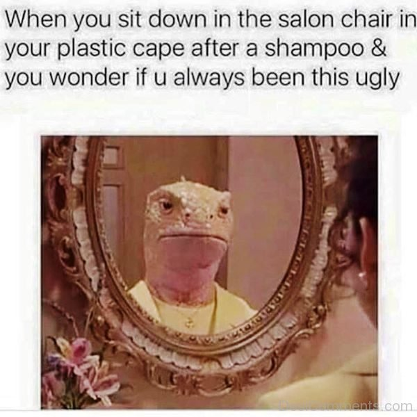 When You Sit Down In The Salon Chair