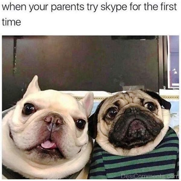 When Your Parents Try Skype