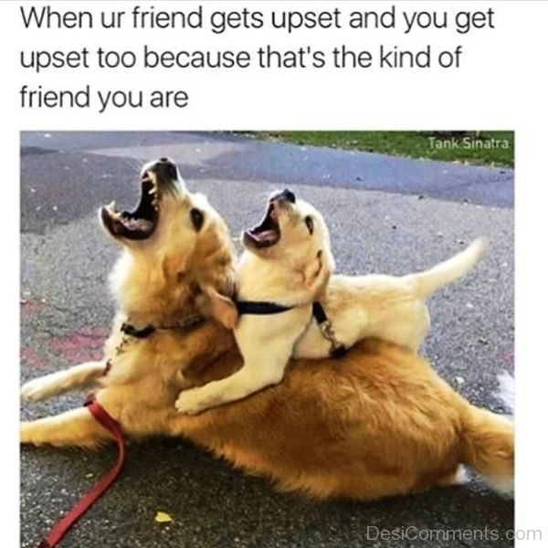 When our Friend Gets Upset