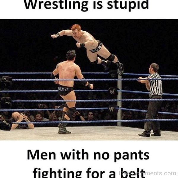 Wrestling Is Stupid