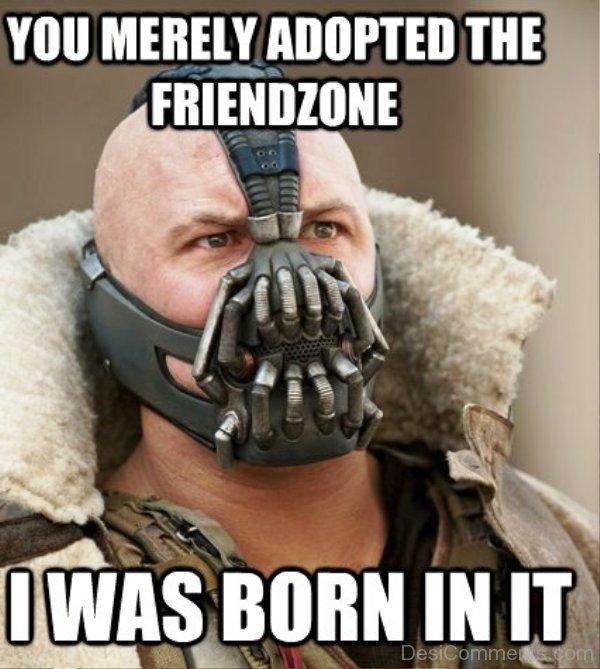 You Merely Adopted The Friendzone