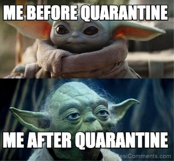 Me Before And After Quarantine
