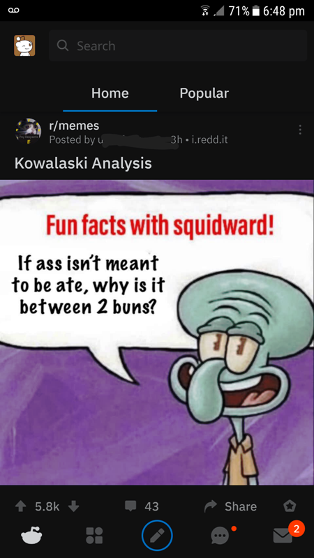 Fun Facts With Squidward