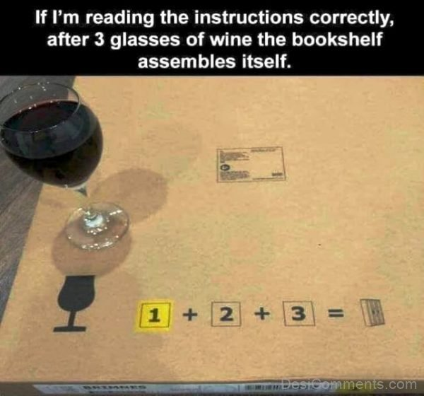 If I'm Reading The Instructions