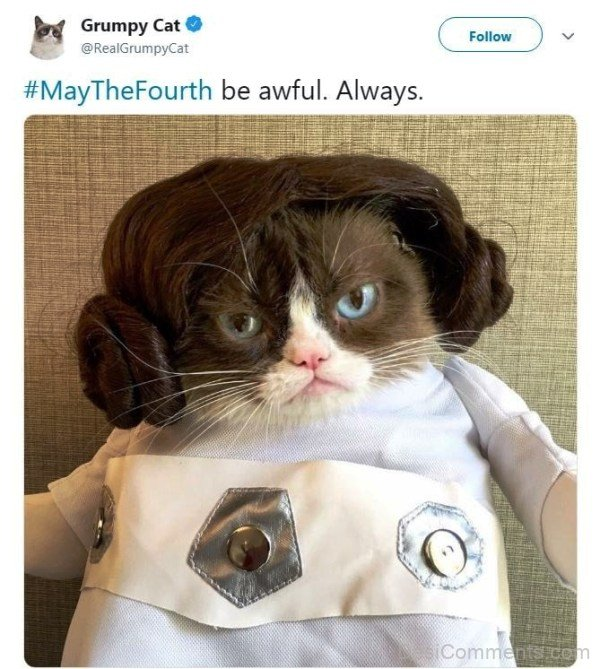 May The Fourth Be Awful